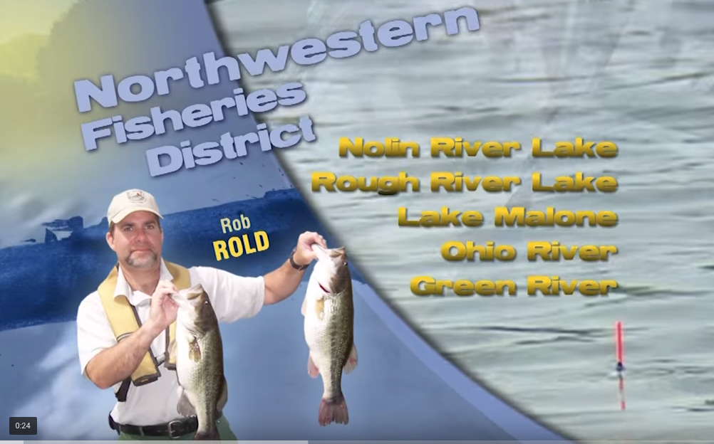 Blog posts expert advice special interest stokley 39 s for Kentucky lake fishing guides
